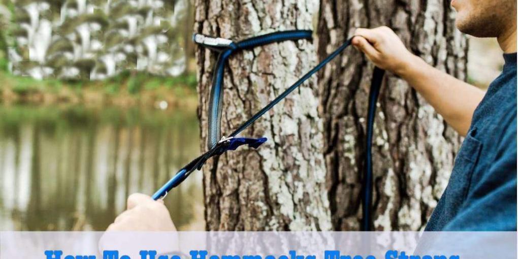 How_to_use_hammock_tree_straps