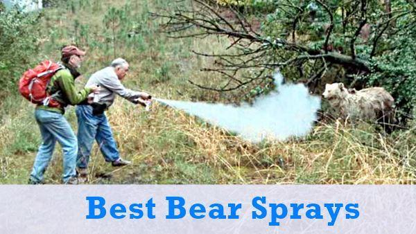 best_bear_sprays